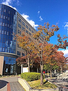 H26.11.13 和歌山大学