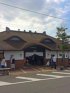 H27.6.25 たま駅長2