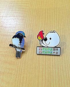 H27.10.9 きんちゃん & Bluebird