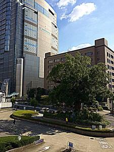 H27.10.29 大阪家庭裁判所